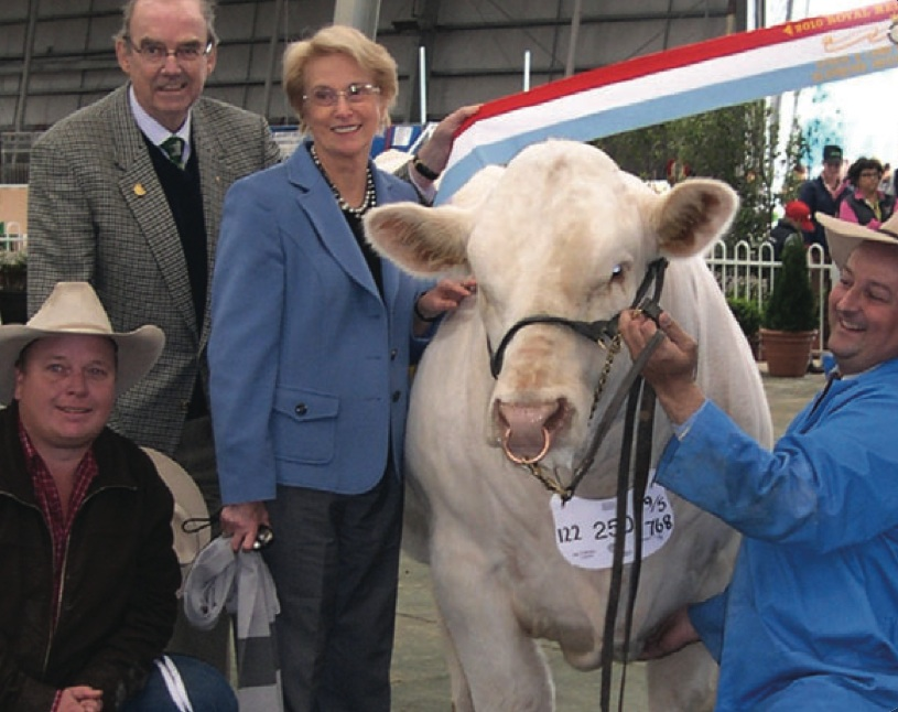 AISE23E Airlie Epicentre Supreme Interbreed Exhibit & Junior and Grand Champion Bull